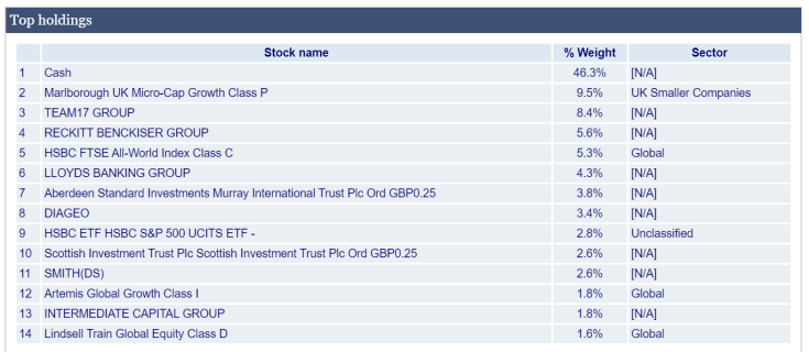 My share holdings